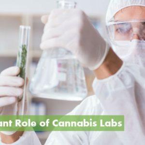 High-Quality Cannabis Testing Labs: ( https://10buds.com )